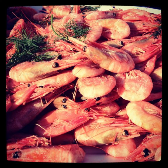Traditional Norwegian Shrimp Buffet