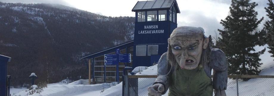 Namsen Salmon Aquarium