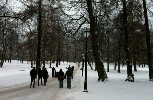 Winter in Slottsparken, Oslo