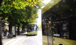 Trondheim bus network