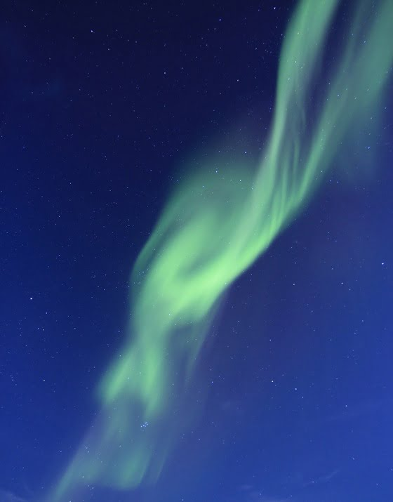 Northern Lights Tromsø