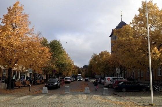 Kongens gate in Autumn
