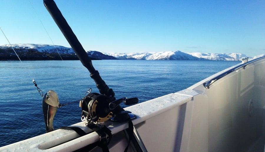 Fishing Arctic