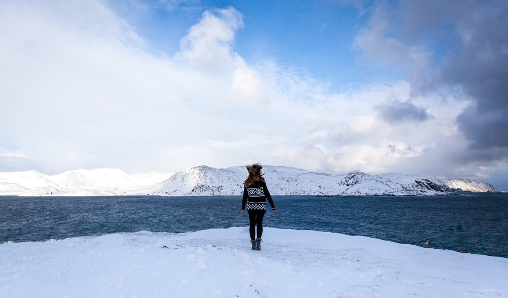 Windswept fjord