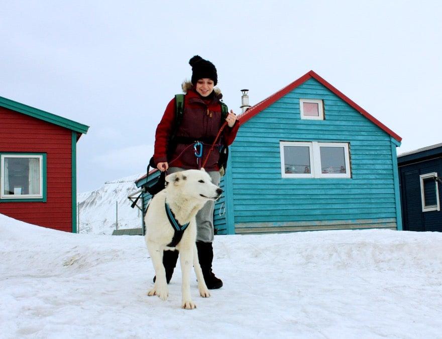 Dog walking in Longyearbyen