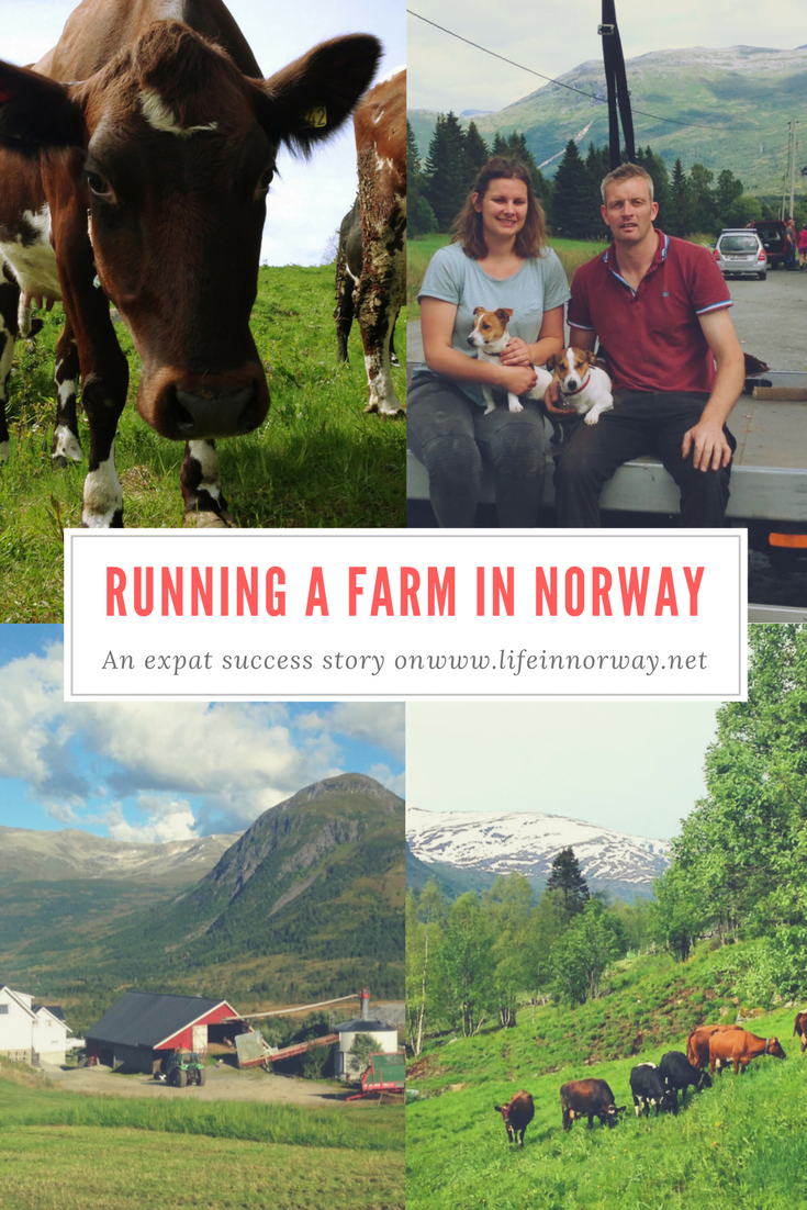How to run a farm in Norway