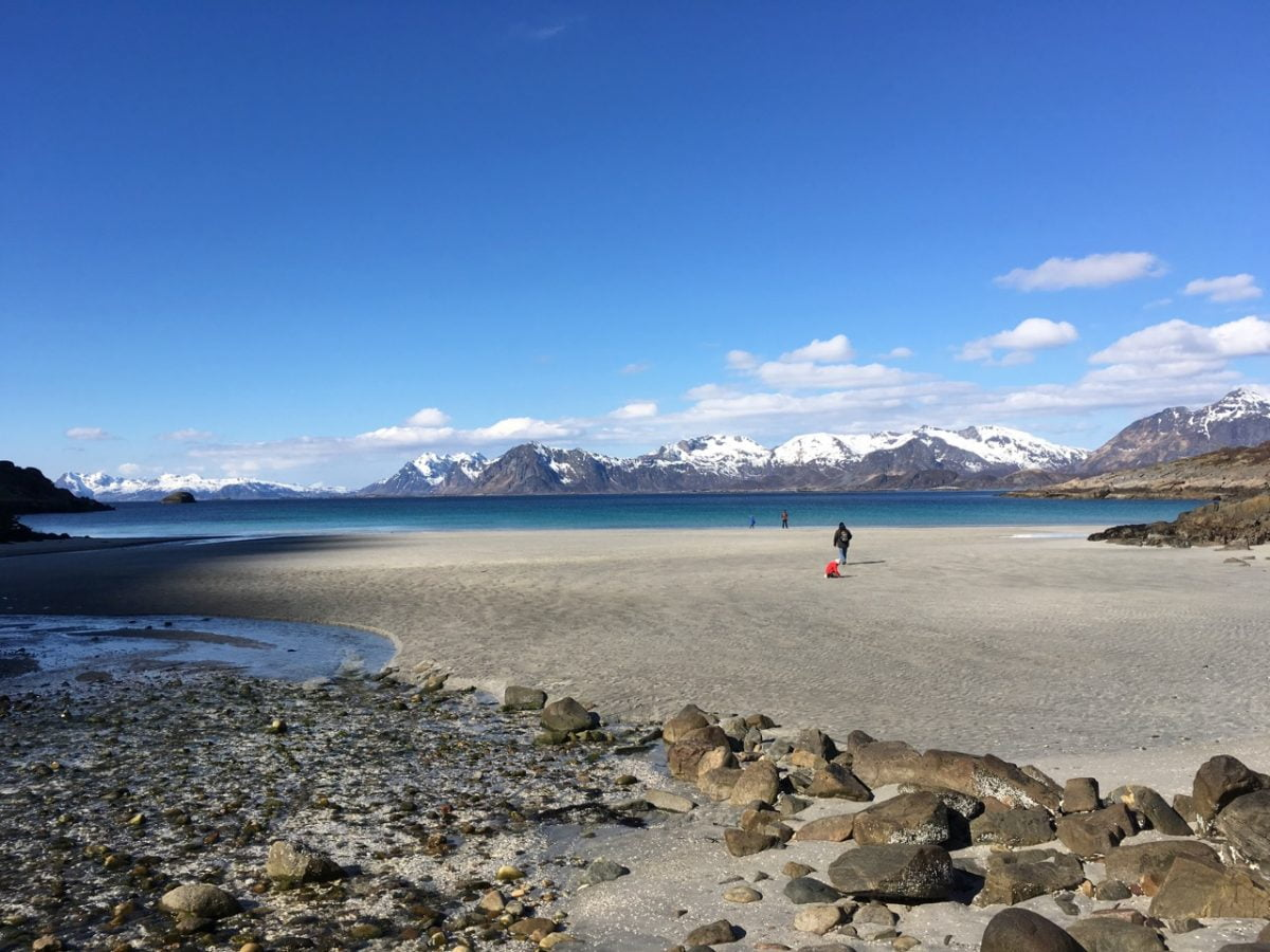 Stunning beach in Lofoten