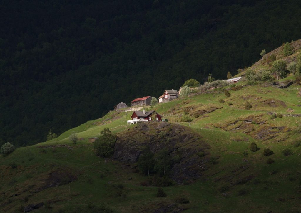 Houses near Flåm