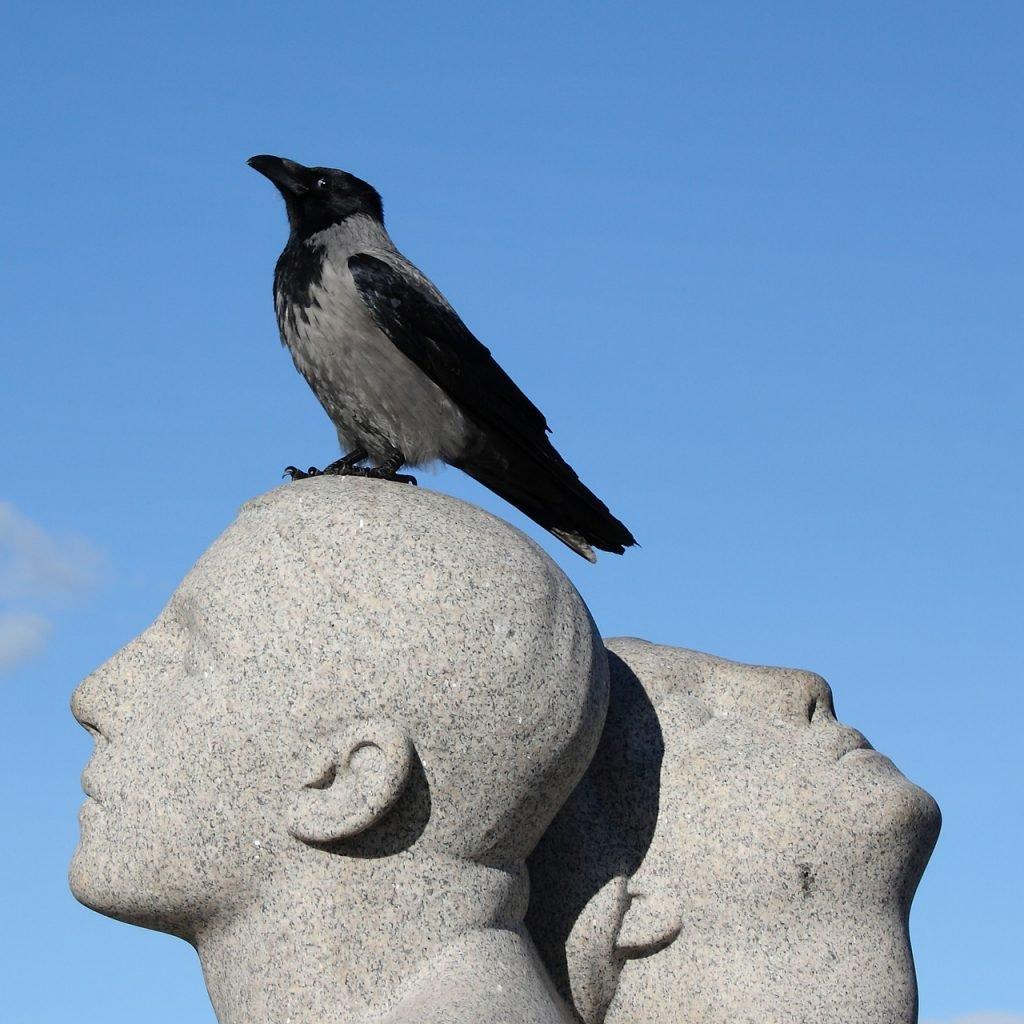 Bird on statue