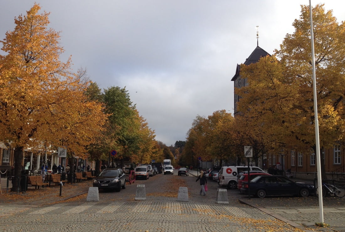 Trondheim in fall