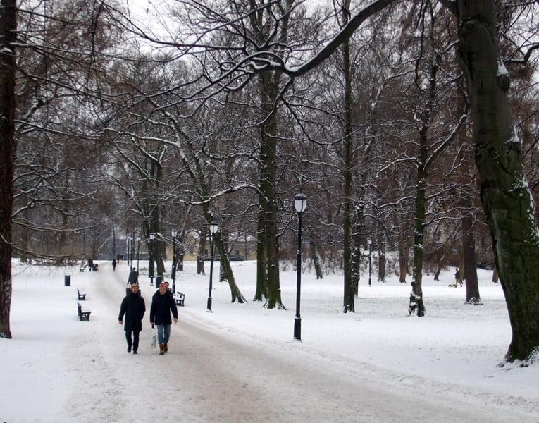 Oslo's Slottsparken in the snow