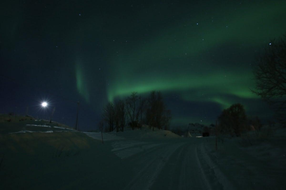 Polar night northern lights