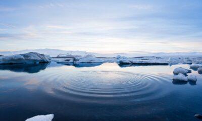 An Arctic winter