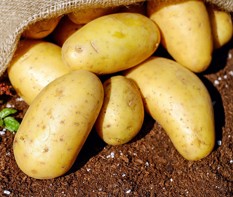 Even potatoes were rationed in the war