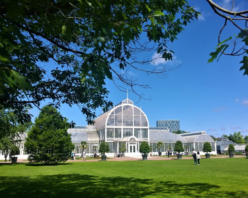 Gothenburg Palm House