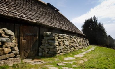 Example Viking longhouses
