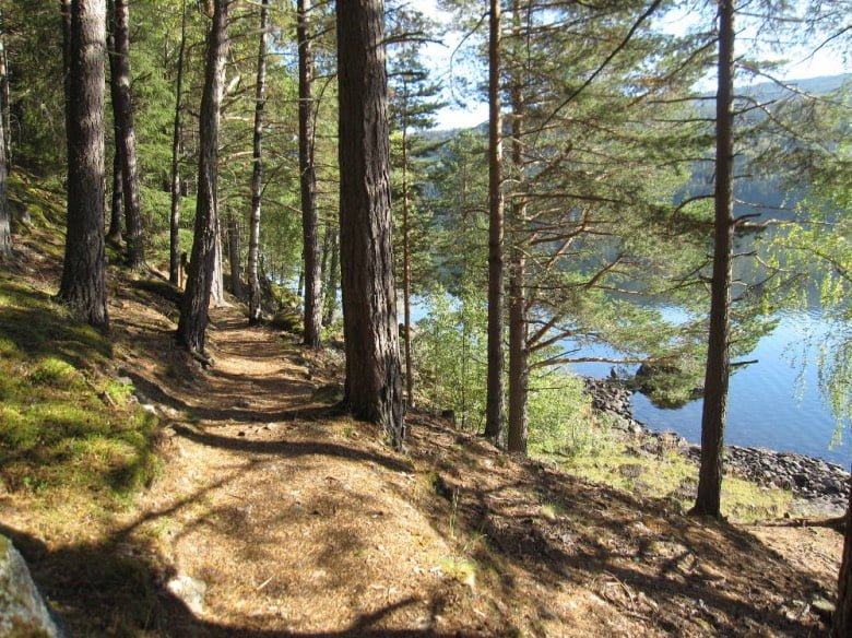 Walk the promontory trail in Fagernes.