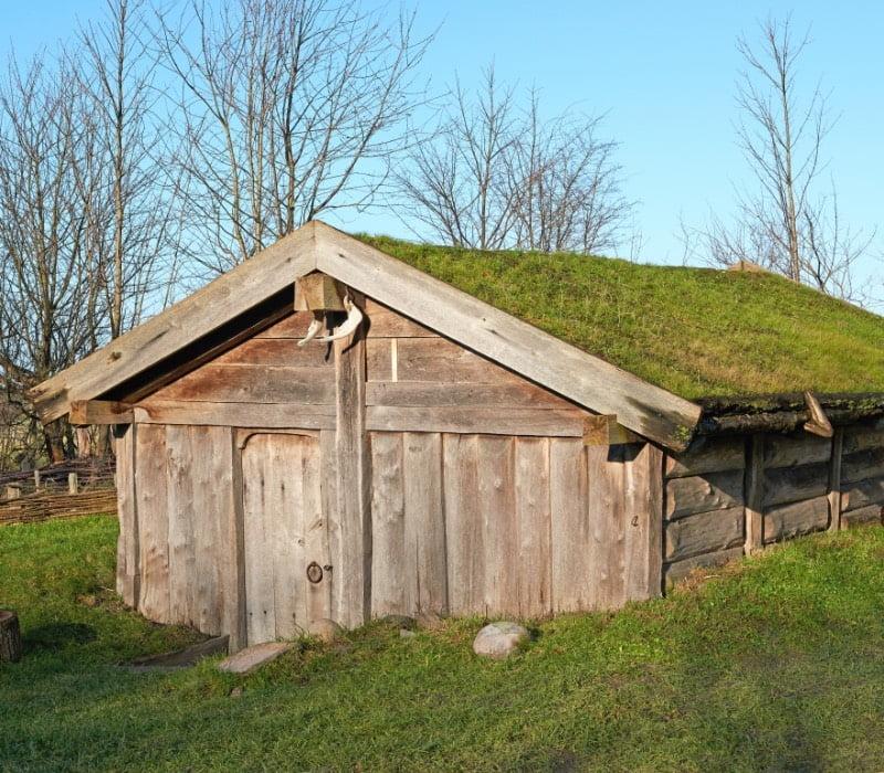 Typical Viking farmhouses