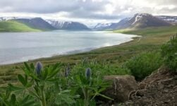 The landscape of Iceland's Westfjords