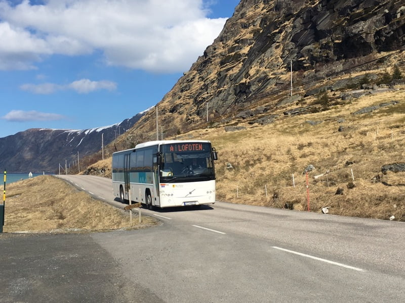 Explore Lofoten by public bus