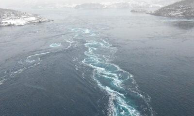 A visit to snowy Saltstraumen near Bodø, Norway