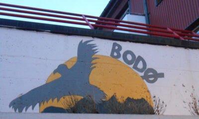 Eagle street art in Bodø, Norway