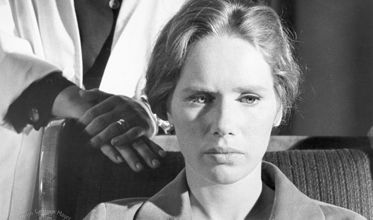 Liv Ullmann in 1966