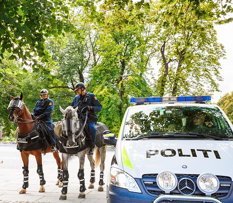 Oslo police car and horse