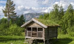 Telemark forest cabin