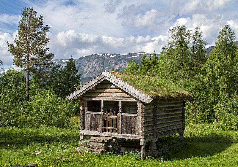 Cabin in the forest of Telemark Norway