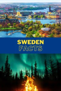 Sweden Facts Pin