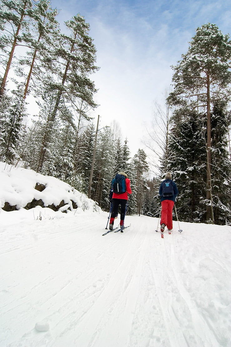 Cross-country skiing in the Oslo forests