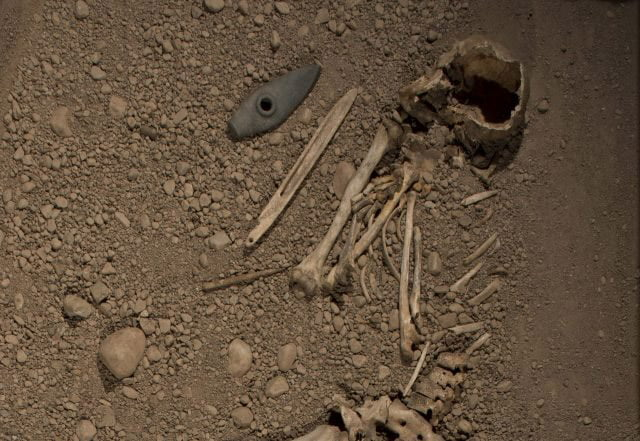 Part of the Bergsgraven discovery, including an axe head clearly visible.