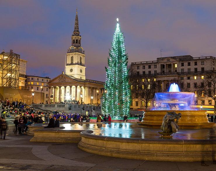 Christmas tree in London's Trafalgar Square