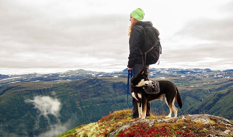 Woman walking a dog on a mountain hike in Norway