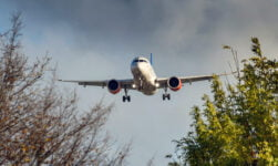 SAS airplane through trees