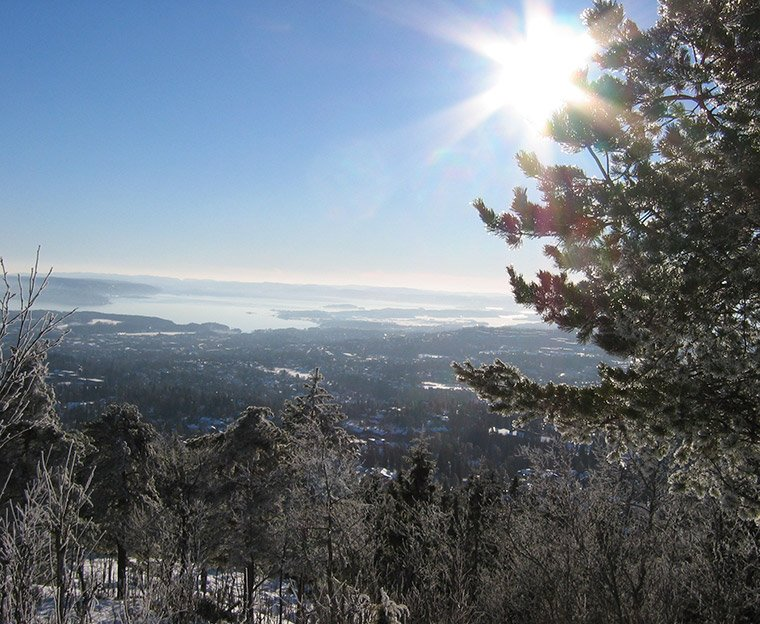 The viewpoint from the Vettakollen hike in Oslo, Norway