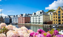 Buildings and flowers in Ålesund, Norway, in the summer