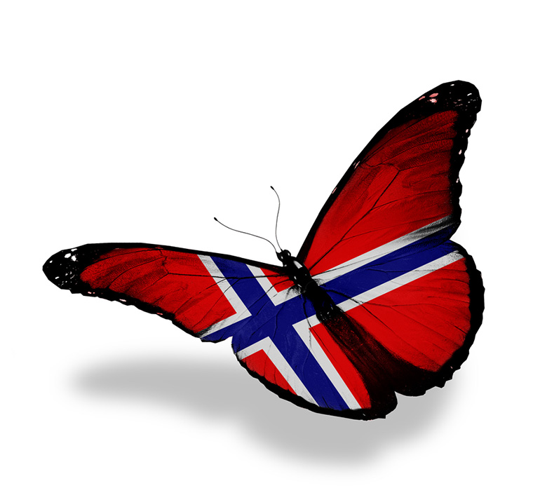 Butterfly featuring the Norwegian flag