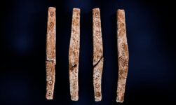 Elongated gaming pieces or dice found in Norway