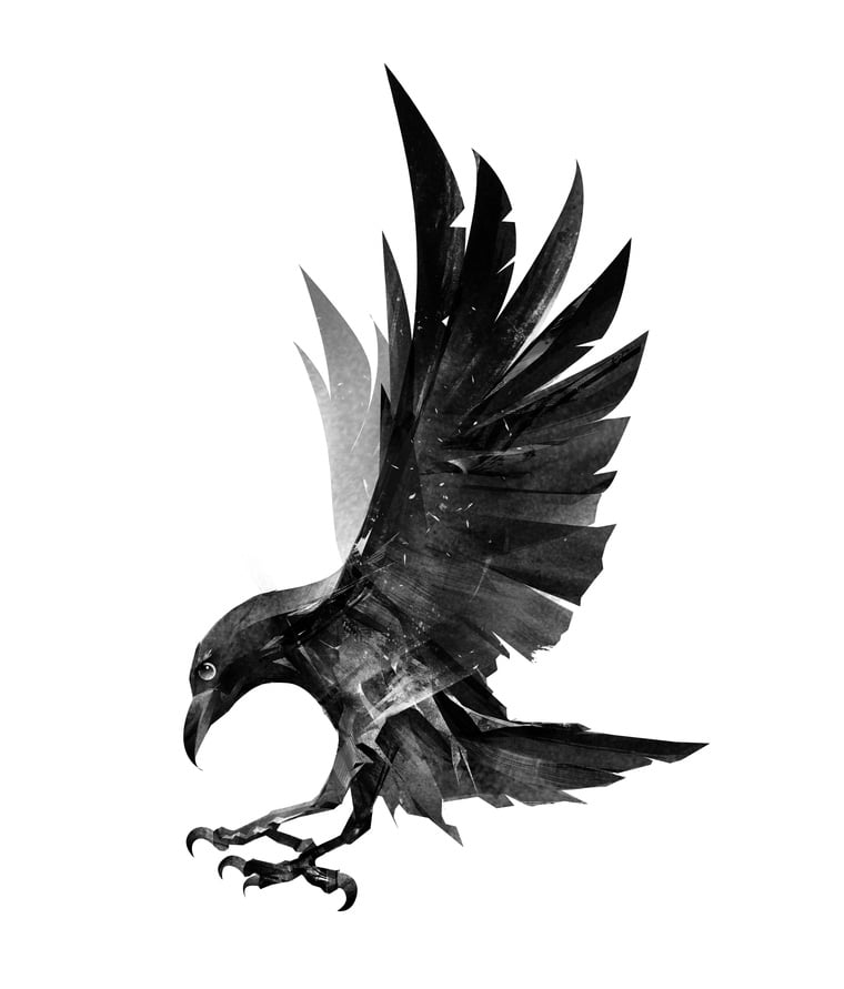 A raven from Norse mythology