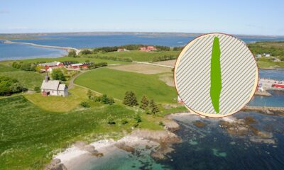 The Viking ship grave scan on Edøy Island off the coast of Norway