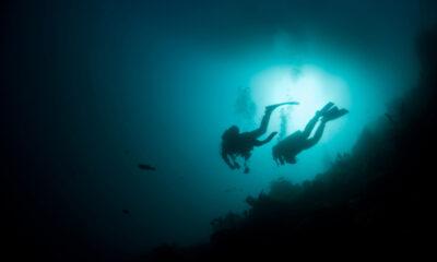 Diving underwater off the Norwegian coast