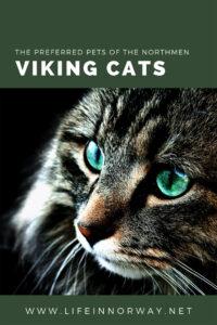 Viking Cats for pinterest