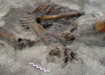 Archaeologists Discover 'Amazing' Iron Age Grave In Lofoten
