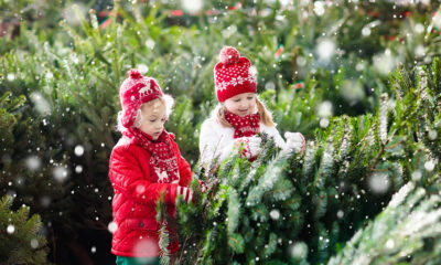 Christmas in Norway - Children with Christmas trees