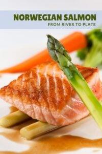 The Story of Norwegian Salmon