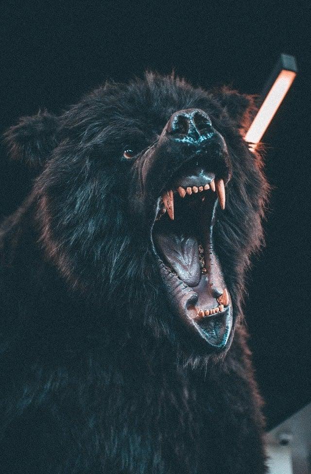 Fenrir , le loup géant de la mythologie nordique