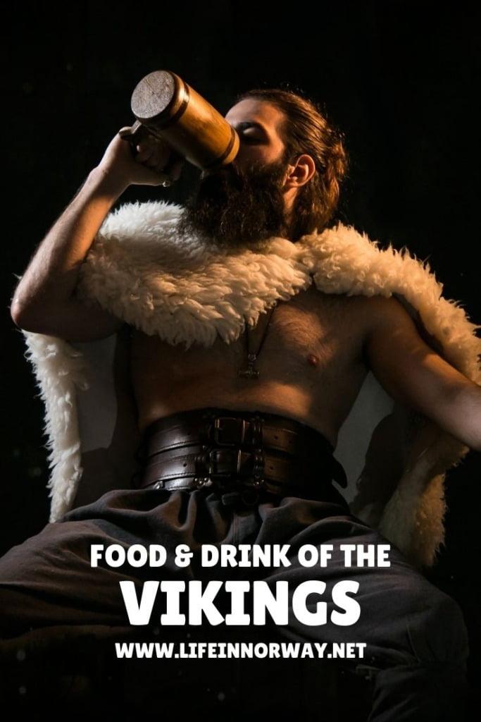 Viking Food and Drink pin