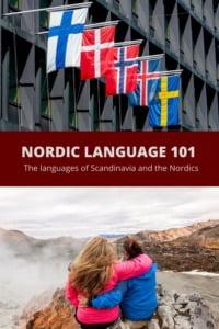 Nordic Language 101 Pin